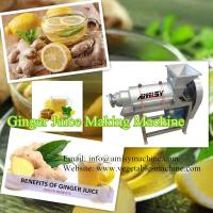 Ginger Juice Making Machine-Screw Type Manufactures