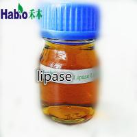 Buy cheap Lipase enzyme for producing bildiesel from wholesalers