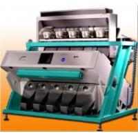 LED CCD Dehydrated Carrots Color Sorter Manufactures