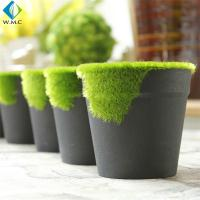 Wholesale Moss Artificial Green Plants 8cm Height 5-10 Years Life Time Customized Design from china suppliers