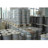 Wholesale Steel Wire Rope, Galvanized Steel Wire Rope /Hot-Dipped Galvanized Steel Wire Rope from china suppliers