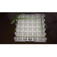 Buy cheap 2015 cheap plastic disposable egg trays from wholesalers