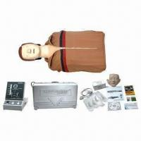 Buy cheap Advanced CPR Training Mannequin, Bust and Half Body from wholesalers
