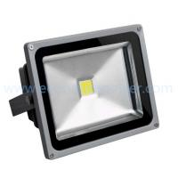 Promote hot selling Ip65 COB 20W LED Flood light working garden light Manufactures