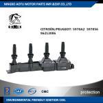 Buy cheap CITROËN / PEUGEOT 5970A2  597056 96213086 Black plug Car Ignition Coil Unit  ignition parts from wholesalers