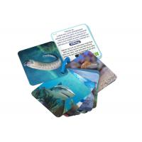 Buy cheap Animial Image 3d Lenticular Sheets Learning card For Children With Alphabet from wholesalers