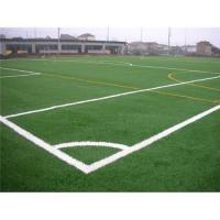 Buy cheap Synthetic grass,Artificial turf,grass,lawn,monofilament from wholesalers