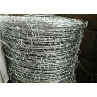 Wholesale Galvanized Stainless Steel Barbed Wire , Security Razor WireDouble Twisted from china suppliers