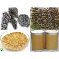 Buy cheap Coriolus Versicolor Extract- 50%Polysaccharides from wholesalers