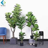 Wholesale Green Artificial Ficus Plant , Ficus Lyrata Plant For Home Decoration R020002 from china suppliers
