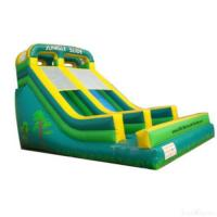 Wholesale Double Lane Inflatable Slide from china suppliers