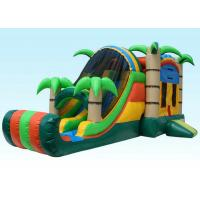 Buy cheap Gaint Inflatable Bouncer Combo , Tropical Inflatable Water Castle from wholesalers