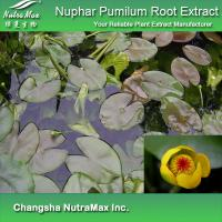 Buy cheap Nuphar Pumilum Root Extract from wholesalers