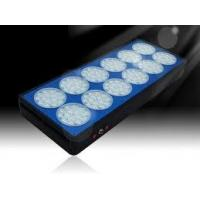 Buy cheap JCX - SZD180W ( 84*3W) 3W Led Aquarium Light Panel with 30 - 120 Degree Lens from wholesalers