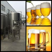 Quality 500L/1000L/1500L  Low price high quality 304 stainless steel beer fermentation tank for sale