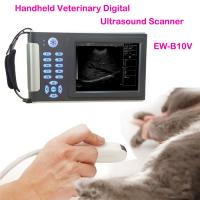 Wholesale Cheapest Veterinary ultrasound scanner EW-B10V with Convex probe C3.5R60 for Abdominal and reproduction from china suppliers