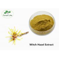 Buy cheap Pure Witch Hazel Extract Powder for Skin Care Raw Cosmetic Ingredients from wholesalers