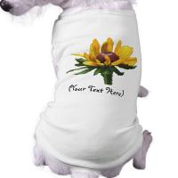 Buy cheap Wholesale dog plain t-shirts 100% cotton from wholesalers
