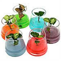 Buy cheap Crystal soil from wholesalers