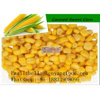 Buy cheap Organic corn kernel sweet canned corn 340G HOT SALE from wholesalers