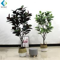 Wholesale 1.6m Height Artificial Bonsai Tree , Faux Rubber Tree Plant For Indoor R020010 from china suppliers