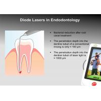 Buy cheap BERYLAS Diode Laser Dental Cuts Through Bone Gums And Any Other Tissues from wholesalers