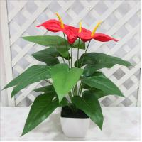 Buy cheap Real touch artificial flower anthurium plant from wholesalers