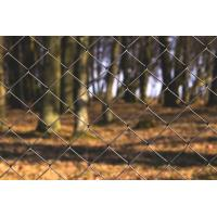 Buy cheap 2.4mx10m Chain Link Fence,Hot Dipped Galvanized Chain-Link Fence from wholesalers