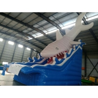 Buy cheap 5×8M  Inflatable Water Slides inflatable Water Game Great White Shark Inflatable Slide from wholesalers