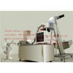Cap wad inserting machine/cap lining machine Manufactures