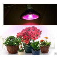 Buy cheap cob led grow light E27 par 20W/30W/40W full spectrum 380-840nm Plant growth lamp Indoor planting flowers and plants gr from wholesalers