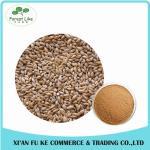 Buy cheap Barley Malt Extract Powder Hordenine 98% from wholesalers