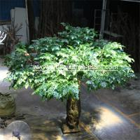 Wholesale Bodhi Leaves Artificial Ficus Religiosa Tree Fiberglass / Wood Material from china suppliers