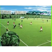 Buy cheap Eco - Friendly Natural Looking Artificial Grass For Hockey Field Long Service Life from wholesalers