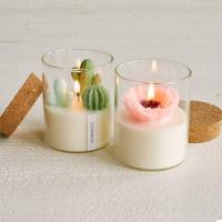 Buy cheap Custom Artificial Plant Non Toxic Scented Candles Soy Based Candles With Wooden Lid from wholesalers