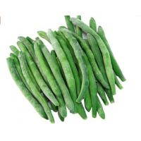 Delicious BRC Fresh Frozen Foods , IQF Whole Frozen Green Beans for Supermarkets Manufactures