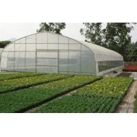 Buy cheap Agriculture Small Tunnel Greenhouse Anti Fog With Huge Roof / Side Ventilation from wholesalers