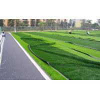 Buy cheap Environmental Sports Artificial Grass , 10mm Yarn 2016 Soccer Field Turf from wholesalers