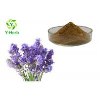 Buy cheap Lavandula angustifolia Mill. Powder Bulk Brown Yellow Lavender Flower Extract from wholesalers