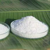 Buy cheap White Natural Food Additives Saw Palmetto Extract Powder With 99% Pass 80 Mesh from wholesalers