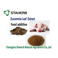 Buy cheap Feed Additive Chlorogenic Acid Extract , Ulmoides Oliver Eucommia Extract Powder from wholesalers