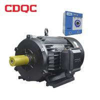 Wholesale CDQC V/F Asynchronous Variable Frequency Induction Motor Black Squirrel Cage from china suppliers