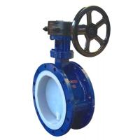 Flange Fluorine-butterfly valve Manufactures