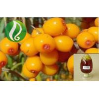 Buy cheap Organic 100% pure sea buckthorn fruit oil hippophae berry oil from wholesalers
