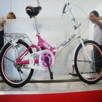 Wholesale kid lightweight folding bike for girls or boys with CE from china suppliers