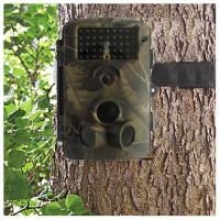 Buy cheap Motion-Triggered Wireless Hunting Cameras With Laser light , Serial Number from wholesalers