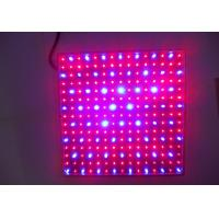 Newest hydroponics lighting 15W 225PCS chips SMD red and blue light LED Grow light for flowering plant Manufactures
