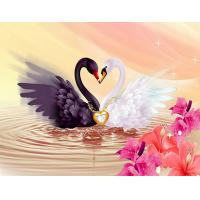 Buy cheap DIY 5D Diamond Painting Cross Stitch sweethearts black and white swan for Bedroom and sitting room decorates from wholesalers