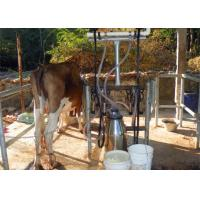 Homemade Small Milking Machine With Milking Cluster Group / Milk Teat Cup Manufactures