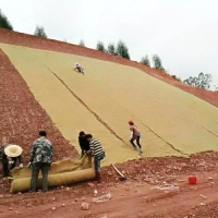 Buy cheap 2.5*40m 400g  biodegradable erosion control blanket coir Geotextile Anti-impact bio-blanket from wholesalers